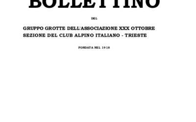 Bollettino – Numero unico, Luglio 1971
